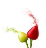 El olor que viene de la fruta de la pimienta imagen de archivo