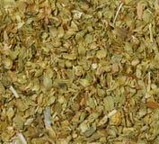El orégano verde secado sale de textura del fondo Imagen de archivo libre de regalías
