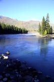 El orgullo de la mañana en el río Fotografía de archivo