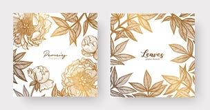 El oro carda las plantillas para casarse los efectos de escritorio, con estilo del vintage, o para muchos otros proyectos de dise stock de ilustración