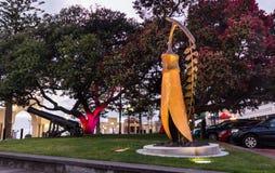 El oro del Kowhai Imagen de archivo libre de regalías