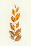 El oro del otoño sale de componer, endecha del plano, forma del oído fotos de archivo