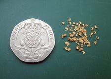 El oro forma escamas cacerola del oro de la toma panorámica del oro de las pepitas Imágenes de archivo libres de regalías