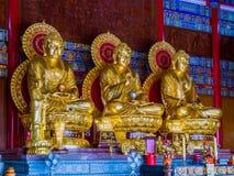 El oro tres pintó las estatuas chinas de Buda del arte en Tailandia Foto de archivo