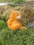 El oso Fotografía de archivo