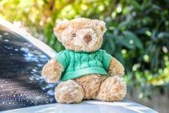 El oso de peluche de Brown puso la camisa verde que se sentaba en la parte de atrás de un blanco fotos de archivo