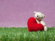 El oso de peluche que lleva a cabo un corazón rojo hecho a mano en fondo de la hierba verde es rosa real Copie el espacio para el Imagen de archivo libre de regalías