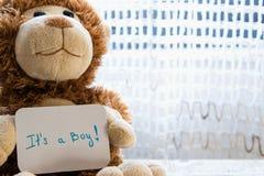 El oso de peluche sostiene una tarjeta del aviso para el bebé, espacio para el texto fotografía de archivo libre de regalías
