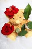 El oso de Tedy con se levantó Imagen de archivo libre de regalías