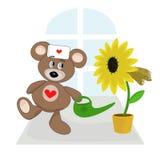 El oso del peluche es doctor. Imagen de archivo