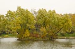 El otoño Imagenes de archivo