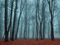 El otoño abandonó el parque en el tiempo de niebla - opinión del paisaje del otoño del parque de niebla del otoño Imagen de archivo