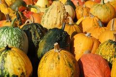 El otoño arribed Foto de archivo libre de regalías
