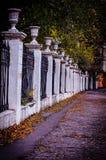 El otoño camina a lo largo de la avenida de parque foto de archivo
