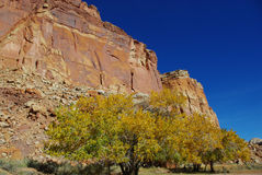 El otoño colorea cerca de Fruita, Utah Imagenes de archivo