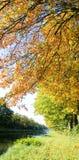 El otoño colorea el río Fotos de archivo libres de regalías