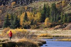 El otoño colorea - Thingvellar - Islandia Imagen de archivo