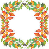 El otoño coloreado ramifica frontera Foto de archivo