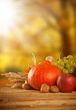 El otoño cosechó la fruta y verdura en la madera Foto de archivo libre de regalías