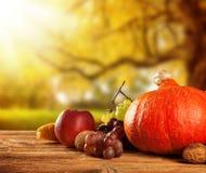 El otoño cosechó la fruta y verdura en la madera Foto de archivo