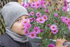 El otoño de la aspiración del muchacho florece, otoño de las flores de la violeta del olor del muchacho en ropa del otoño fotografía de archivo