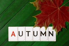 El otoño de la inscripción en una cubierta de madera verde con la hoja de arce roja seca fotos de archivo libres de regalías