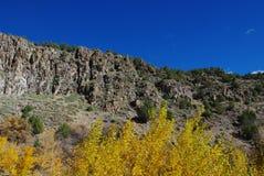 El otoño en las montañas acerca al castor, Utah Imagen de archivo libre de regalías