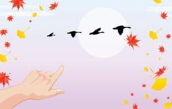 El otoño está viniendo Imagen de archivo libre de regalías
