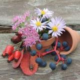 El otoño florece en un pote en un fondo de madera Fotografía de archivo