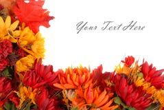 El otoño florece la frontera Foto de archivo