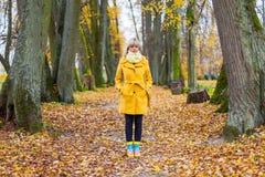 El otoño ha venido Imagen de archivo libre de regalías