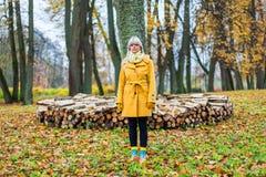 El otoño ha venido Fotos de archivo