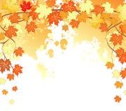 El otoño hojea detrás Imágenes de archivo libres de regalías
