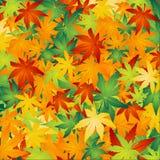 El otoño hojea fondo ilustración del vector