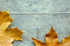 El otoño hojea tabla aguda imagen de archivo libre de regalías