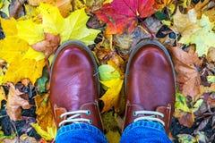 El otoño patea estilo de moda de la moda del fondo de las hojas Fotos de archivo libres de regalías