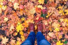 El otoño patea estilo de moda de la moda del fondo de las hojas Imagenes de archivo