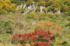 El otoño que lleva de la montaña Imagen de archivo libre de regalías