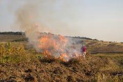 El otoño quema la hierba seca Imagen de archivo