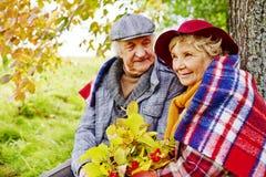 El otoño se relaja Foto de archivo libre de regalías