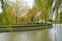 El otoño y colores del otoño de Tang fotografía de archivo libre de regalías