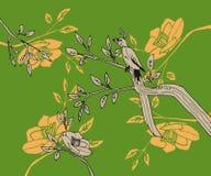El pájaro con la cola larga sienta una rama con las hojas y las flores en Imagenes de archivo