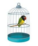 El pájaro de la historieta - loro - ejemplo para los niños Imagen de archivo libre de regalías