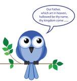El pájaro de ruega Foto de archivo libre de regalías