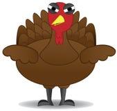 El pájaro infeliz de Turquía de la acción de gracias se coloca solamente Imagen de archivo libre de regalías