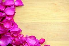 El pétalo color de rosa rosado se enmarca en un tablero de madera Tenga espacio imagen de archivo libre de regalías