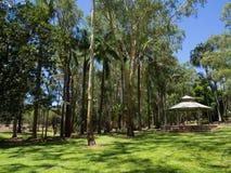 El pabellón de madera blanco en el jardín botánico esmeralda, Queensland, Australia fotografía de archivo