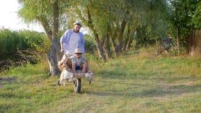 El padre alegre engaña alrededor con su pequeño hijo en carretilla en el campo, vacaciones de familia felices al aire libre almacen de metraje de vídeo