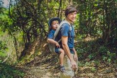 El padre lleva a su hijo en un bebé que el llevar está caminando en la f foto de archivo