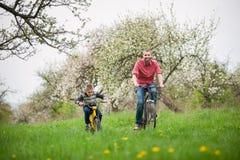 El padre y el hijo montan las bicicletas en el jardín de la primavera foto de archivo libre de regalías